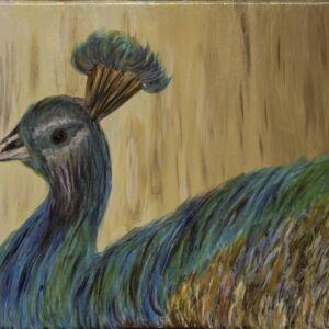 PĂUNUL - pictură, acrilic pe pânză